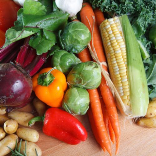 Outdoor Plants Vegetables