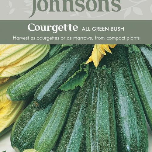 COURGETTE All Green Bush