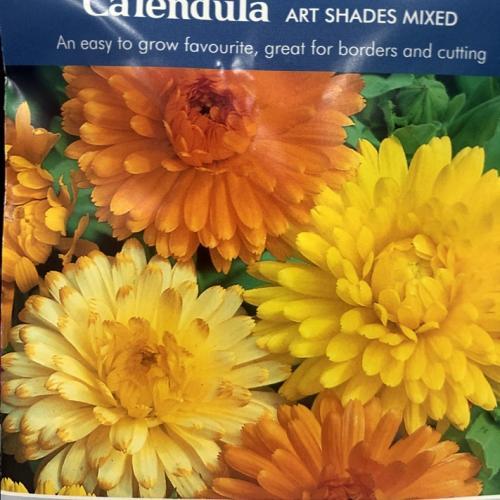CALENDULA Art Shades Mixed
