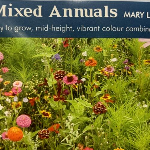 MIXED ANNUALS Mary Lou