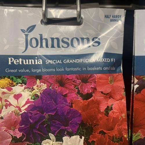 PETUNIA Special Grandiflora Mixed F1