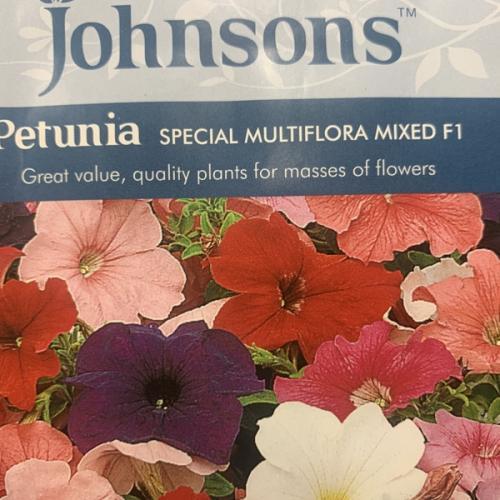 PETUNIA Special Multiflora Mixed F1