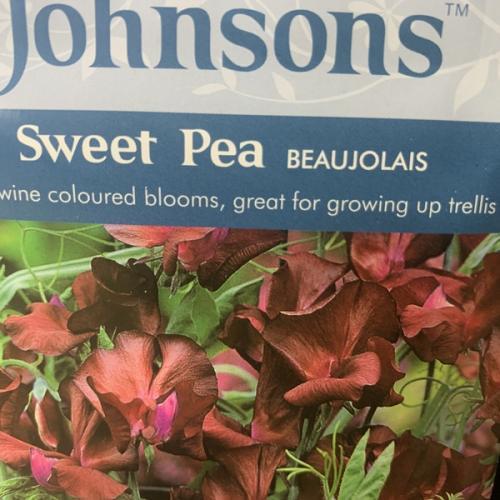 SWEET PEA Beaujolais