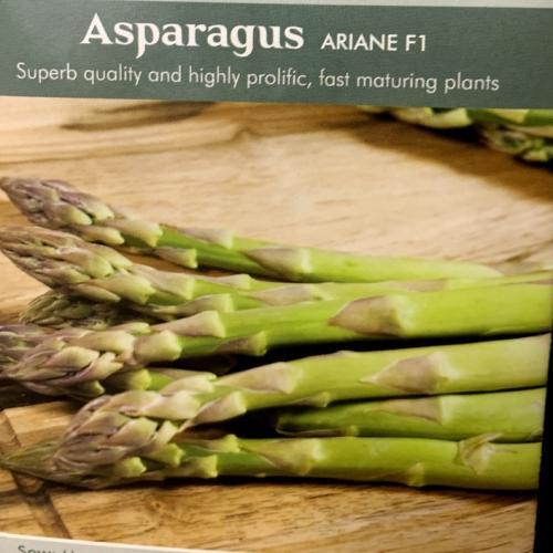ASPARAGUS Ariane F1
