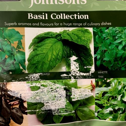 BASIL COLLECTION