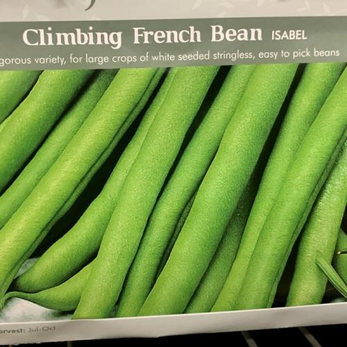 CLIMBING FRENCH BEAN Isabel
