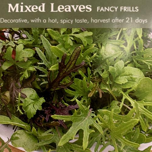 MIXED LEAVES Fancy Frills