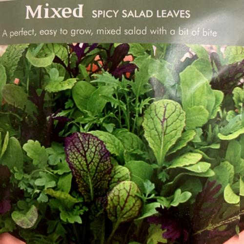 MIXED Spicy Salad Leaves