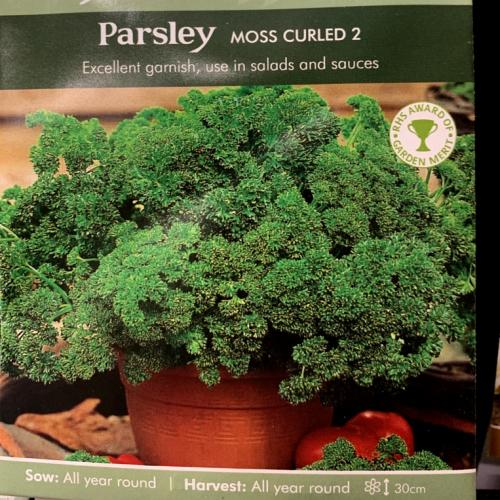 PARSLEY Moss Curled 2