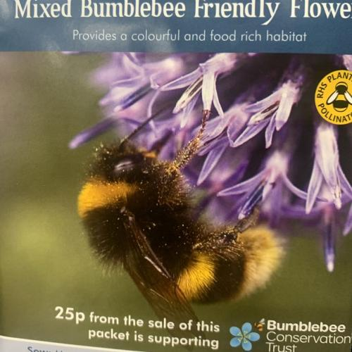 MIXED Bumblebee Friendly Flowers