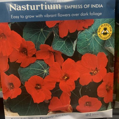 NASTURTIUM Empress of India