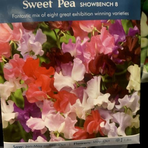 SWEET PEA Showbench 8