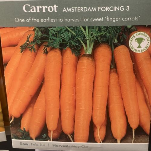 CARROT Amsterdam Forcing 3 (Sprint)