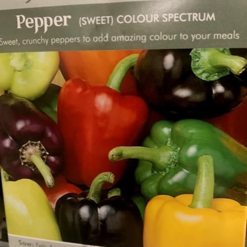 PEPPER (Sweet) Colour Spectrum