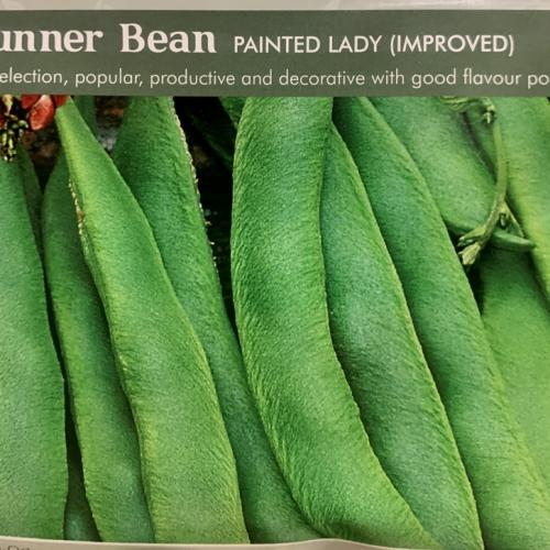 RUNNER BEAN Painted Lady (Improved)