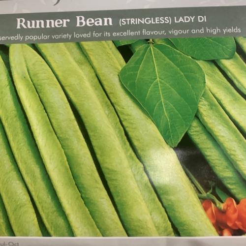 RUNNER BEAN Lady Di (Stringless)