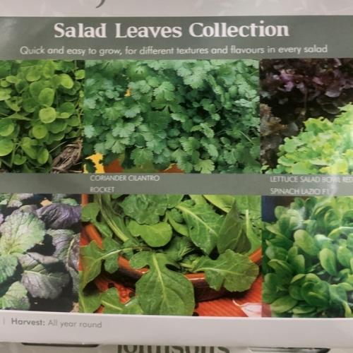 SALAD LEAVES COLLECTION