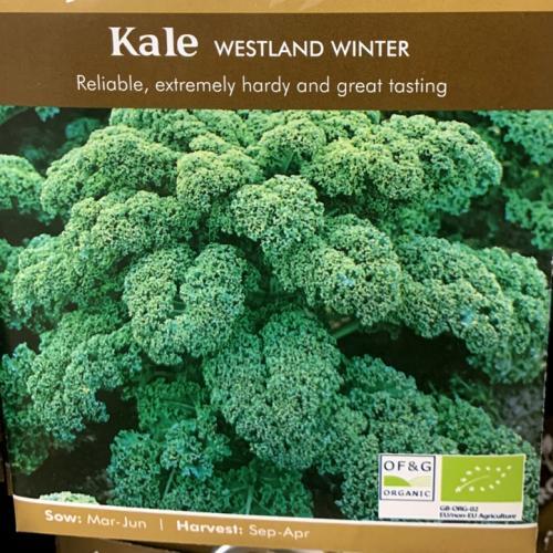 ORG KALE Westland Winter